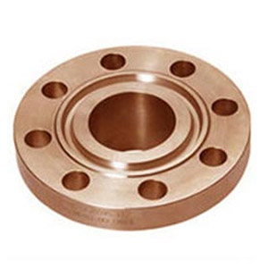 RTJ-cupro-nickle-flanges-manufacturers